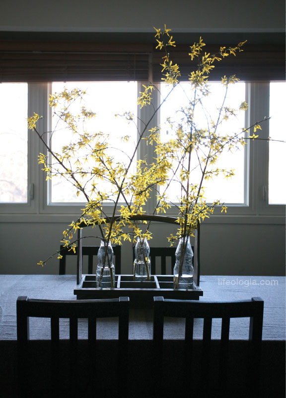 lifeologia-forsythia-table-decor