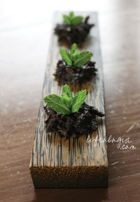 lifeologia-sweet-seedlings-from-the-earth-an-earth-day-vegan-treat8