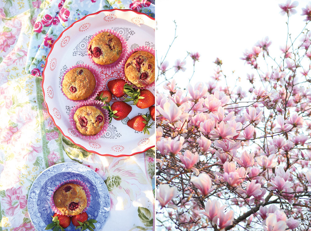 Ella-Leche-Pure-Ella-Raspberry-Lemon-Muffins-gluten-free-vegan-low-sugar6
