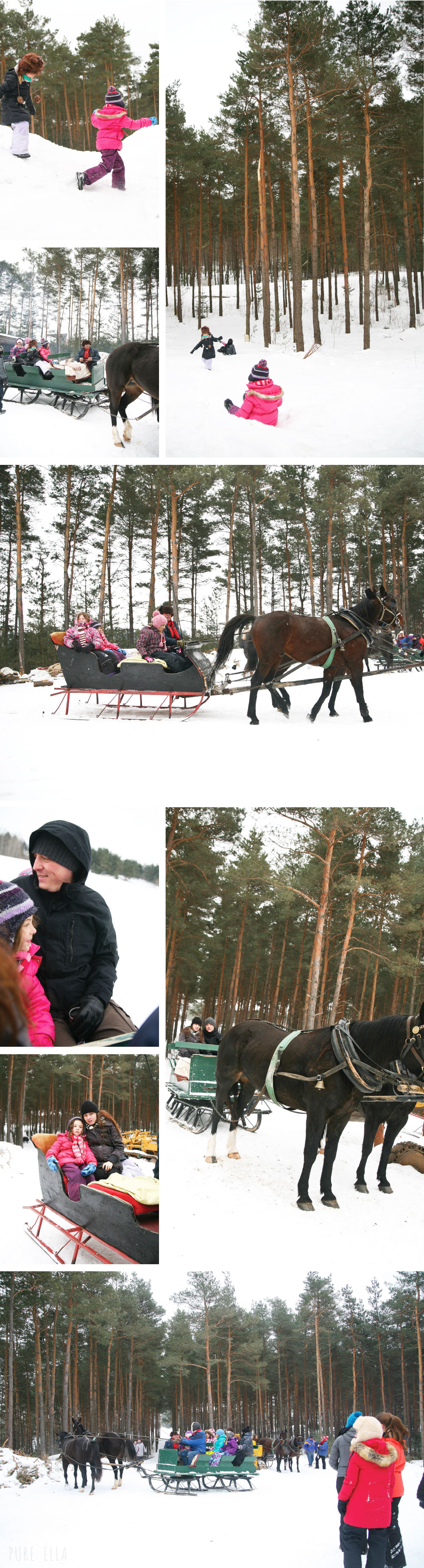 Pure-Ella-Horse-Drawn-Sleigh-Ride2