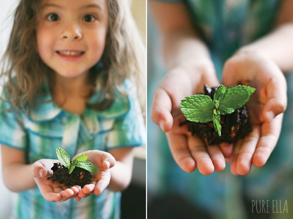 Pure-Ella-Sweet-Seedlings-with-chocolate-dirt5