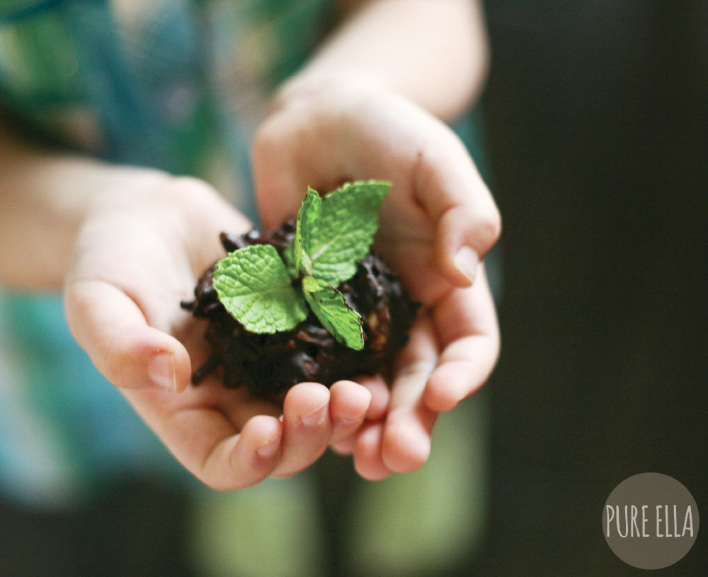 Pure-Ella-Sweet-Seedlings-with-chocolate-dirt6