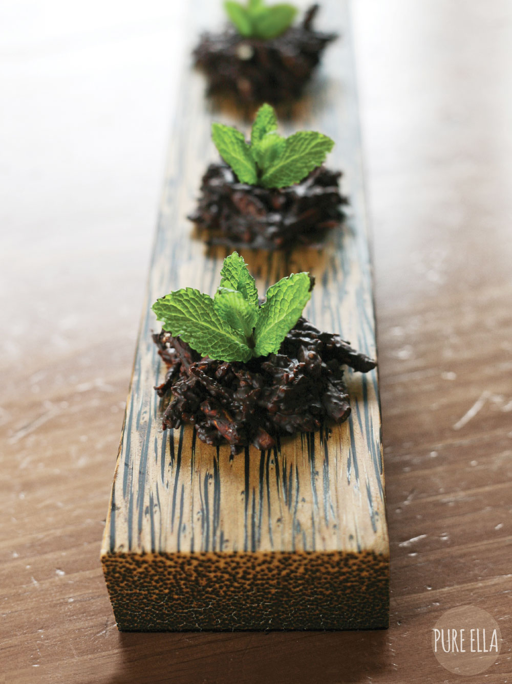 Pure-Ella-Sweet-Seedlings-with-chocolate-dirt8