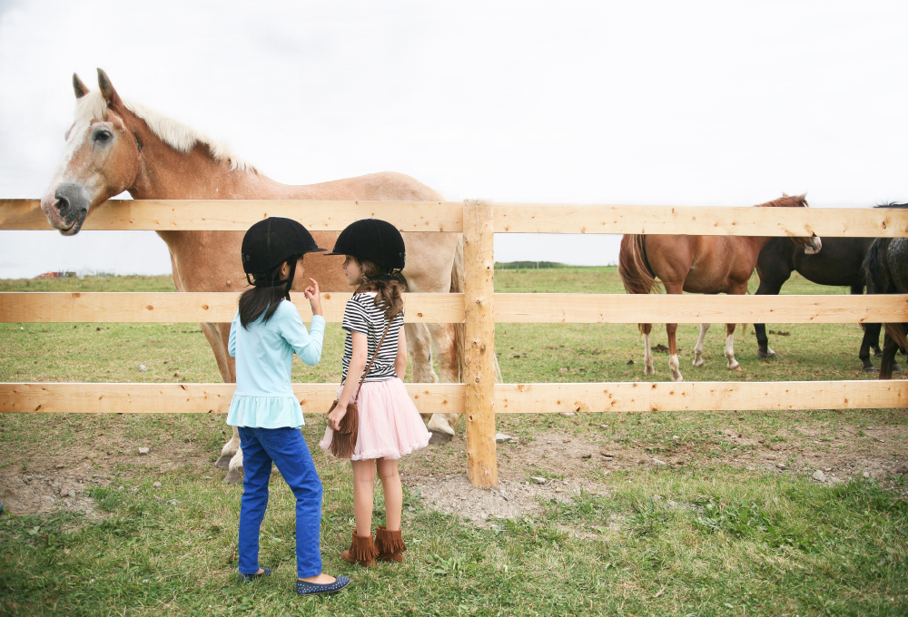 Pure-Ella-horse-ranch-birthday-party022