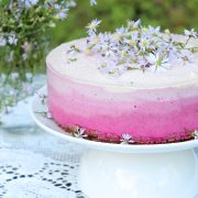 Raw Vegan Ombre Cheesecake