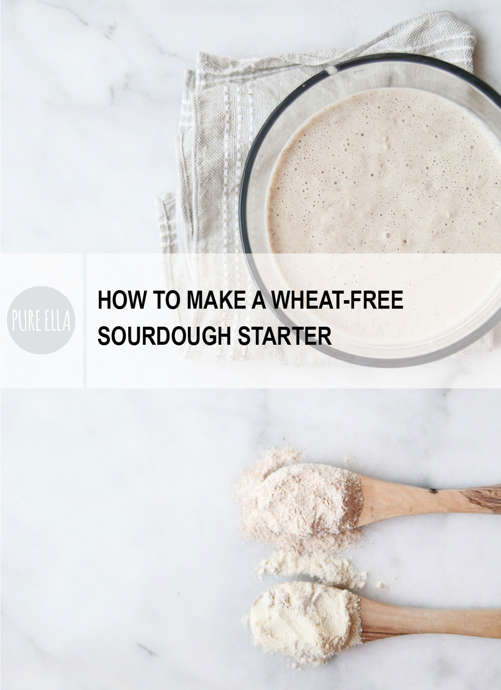 how to know when to feed sourdough starter
