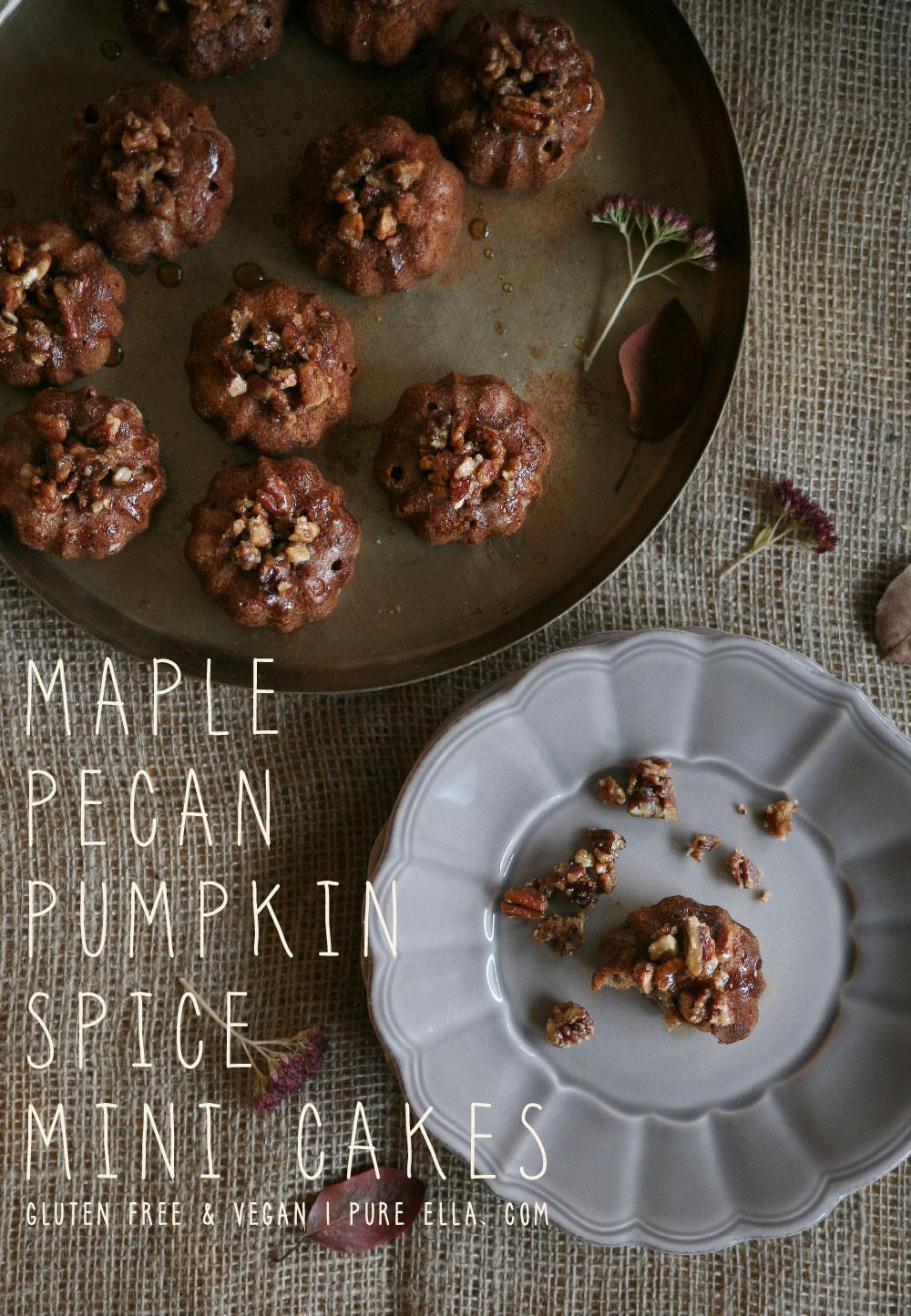 Pure-Ella-Maple-Pecan-Pumpkin-Spice-Gluten-free-Vegan