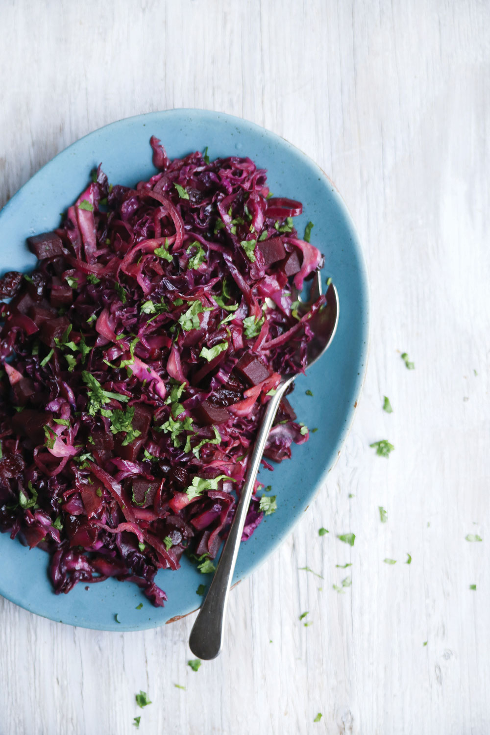red-cabbage-beet-slaw4