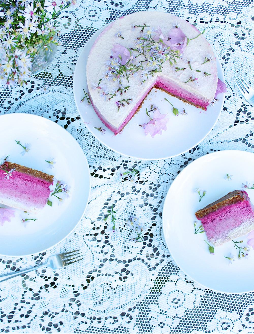 vegan-ombre-cheesecake5
